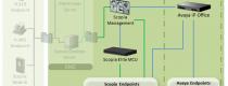avaya radvision solution avaya IPOffice integration